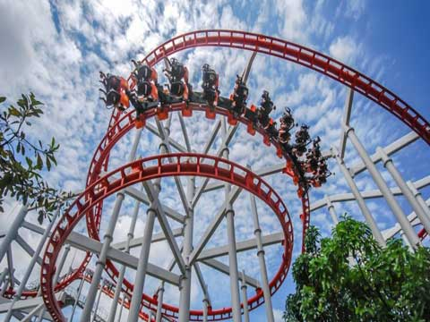 Thrilling Amusement Rides - Roller Coaster