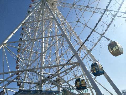 88m Carnival Ferris Wheel For Sale In Beston Supplier In China