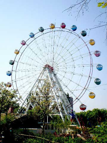42m Ferris Wheel Ride - Beston Ferris Wheel Supplier
